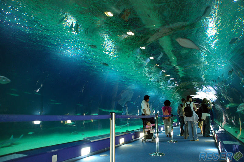 Undervattenstunnel, L'Oceanographic Science Centre